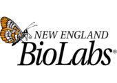 نمایندگی فروش محصولات شرکت NEW ENGLAND BioLabs (NEB)