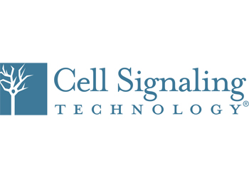 نمایندگی فروش محصولات شرکت Cell Signaling Technology (CST)
