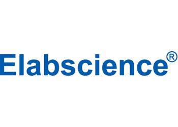 نمایندگی فروش محصولات شرکت Elabscience