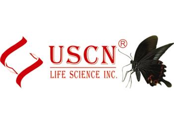 نمایندگی فروش محصولات شرکت USCN